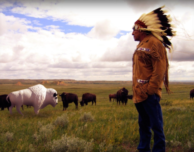 White Buffalo Day: Unity in a World Divided