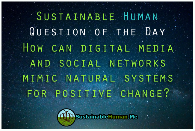 sustainable_human_question