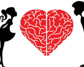 The Neurobiology of Love & Relationships