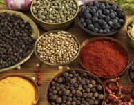 Adaptogens, Nature's Secret for Balancing the Body