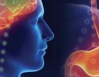 This is Your Brain on Serotonin